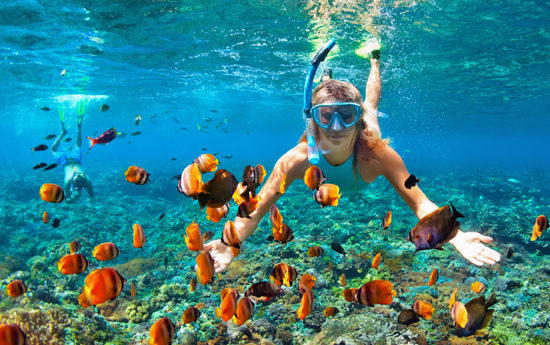 Boat Tours and Scuba Diving Hawaii