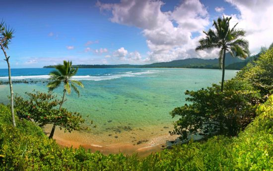 Paradise Beach in Kauai Hawaii With Turquoise Water and Palm Trees.