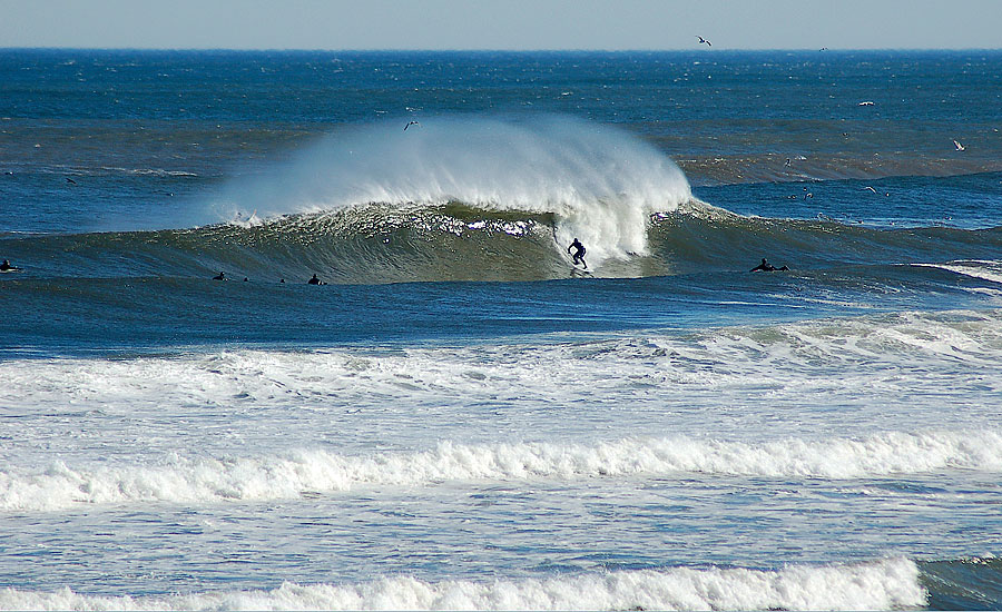 Behind The Scenes At New Jerseys Most Dependable Wave Spot Check