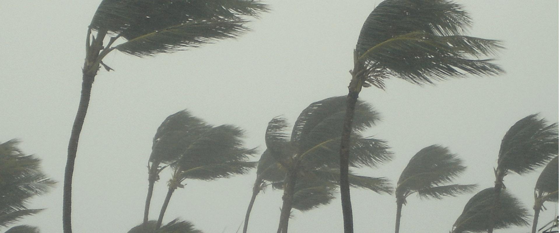 storage storm coverage