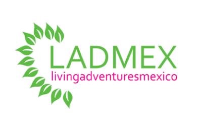 Somos una empresa mexicana-alemana 100% sustentable, con la intención de crear EXPERIENCIAS de viaje y lazos entre comunidades y pequeños y grandes...