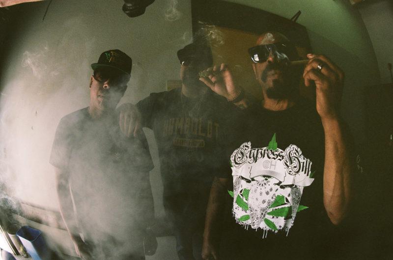 Cypress 12
