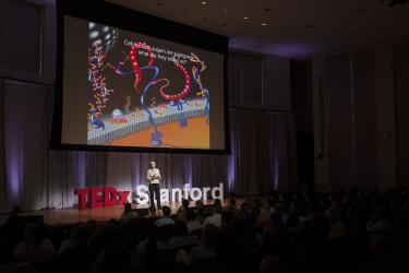 "Professor Carolyn Bertozzi delivers her talk, ""Don't Sugar-coat Cancer."" (Photo:TamerShabani)"