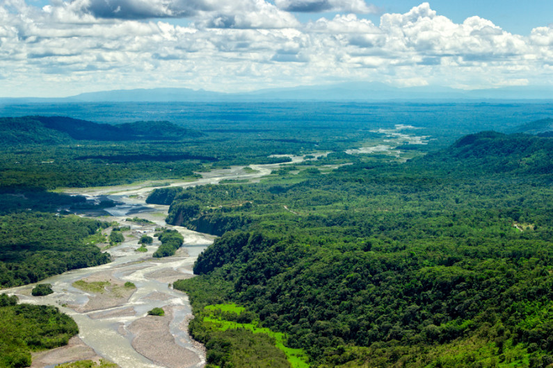 Stanford scientists find Amazon rain forest responds quickly to ...