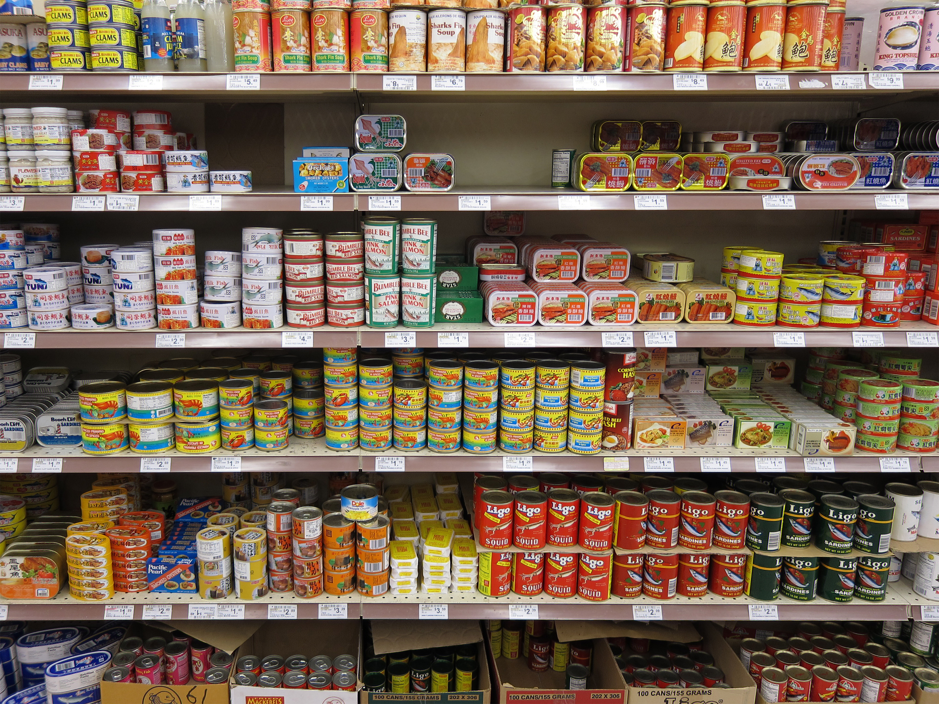 Stanford researcher finds link between canned food and for Cuisine store