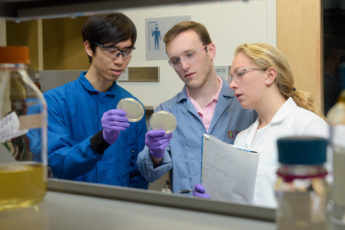 Christian Choe, left, Zach Rosenthal and Maria Filsinger Interrante, aka Team Lyseia, strategize about upcoming experiments to test their new antibiotics.