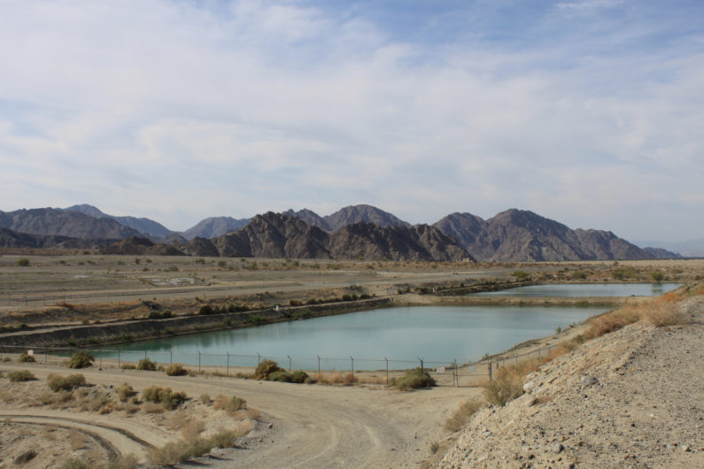 View of the Coachella Valley recharge basin in California