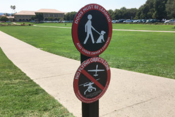 Sign at the campus Oval declaring the area a 'No Flying Objects Zone'
