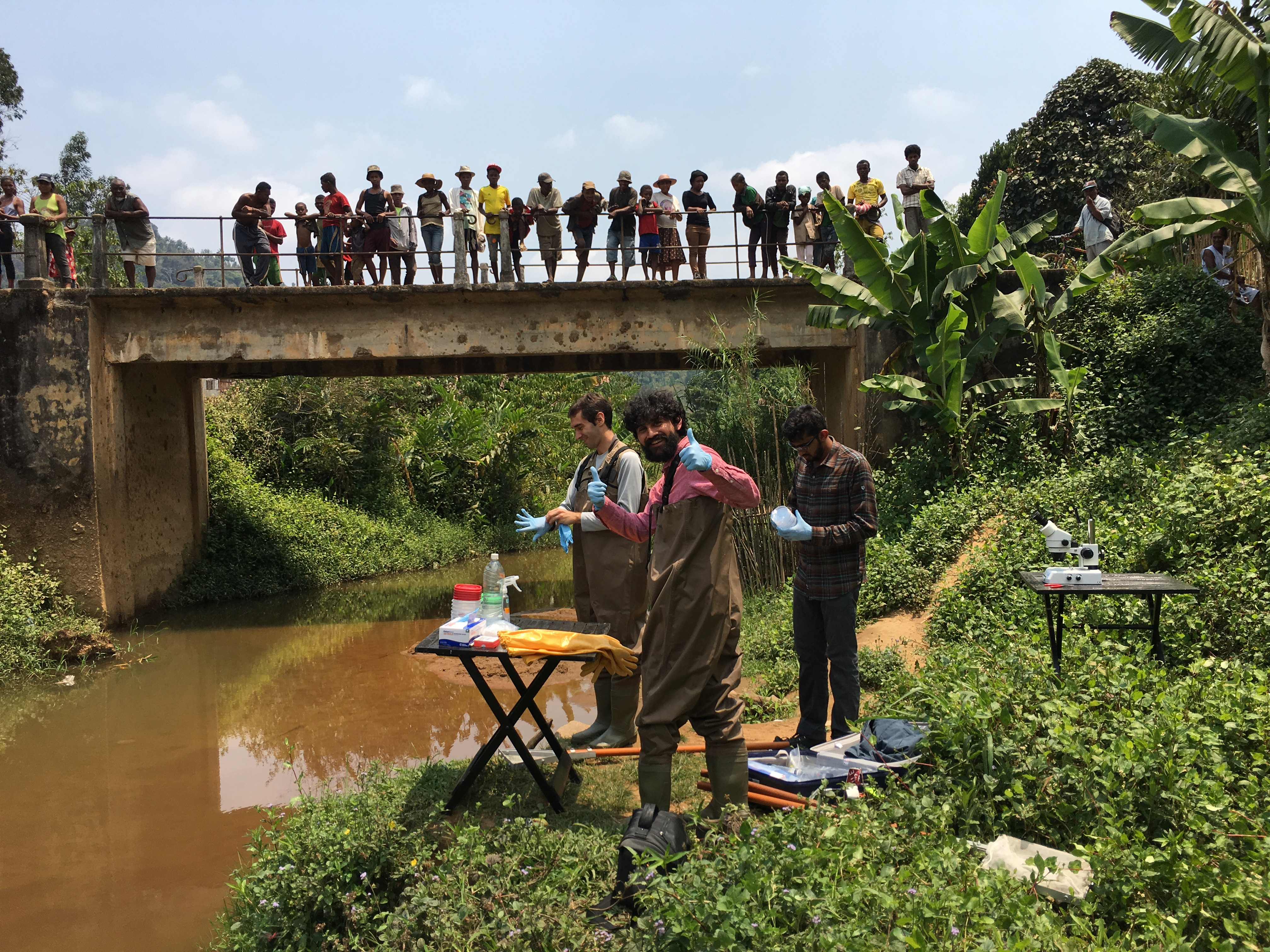 Stanford scholars Manu Prakash and Deepak Krishnamurthy with local worker Andres (no last name given) in a river in Madagascar gathering larvae that cause schistosomiasis while local people look down on them from a bridge