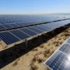Large array of solar panels