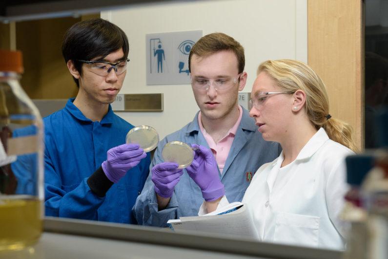 Christian Choe, left, Zach Rosenthal and Maria Filsinger Interrante