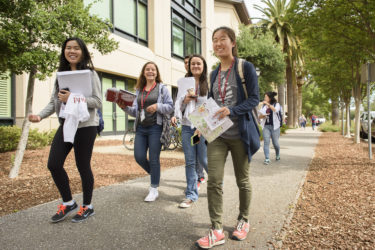 groups of admits walking together to explore campus