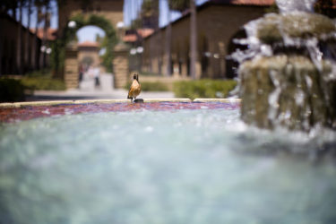 Bing Wing fountain.