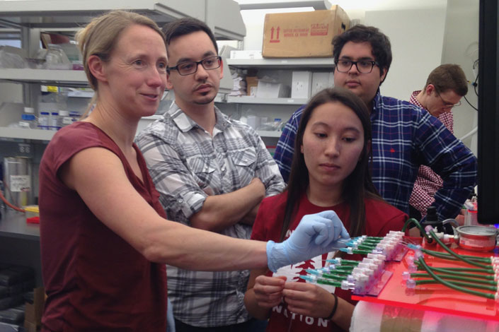 Polly Fordyce (left), assistant professor of bioengineering and genetics, and graduate students Louai Labanieh, Sarah Lensch and Diego Oyarzun discuss the design of a microfluidic device built to study coral bleaching.