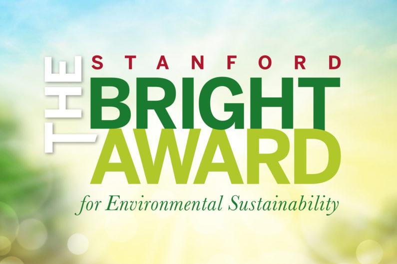 Bright Award 2017