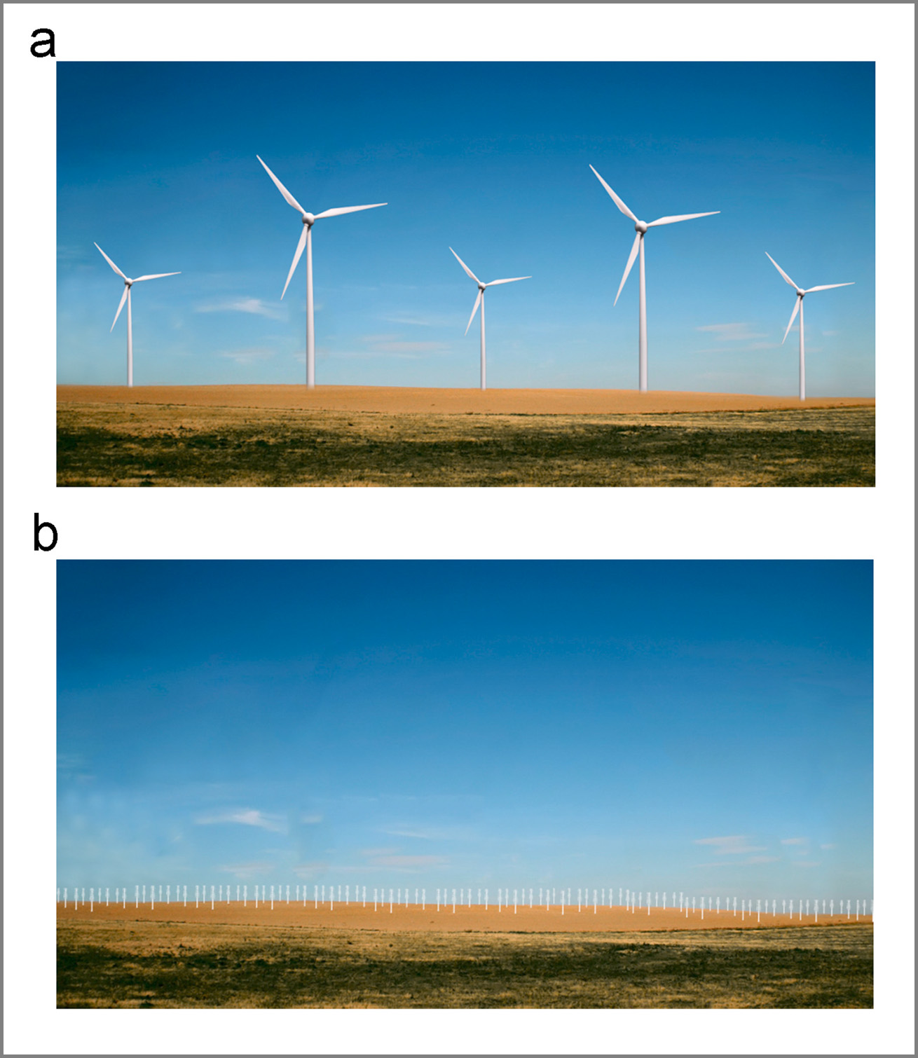 traditional versus horizontal axis wind turbines in open space setting
