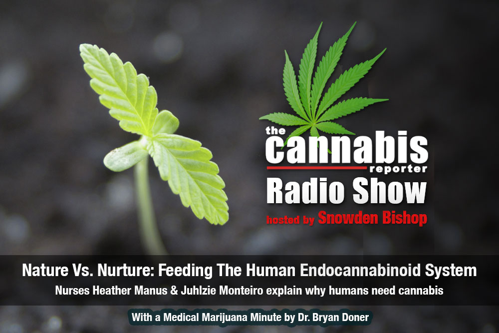 Nature Vs Nurture- Feeding the Endocannabinoid System