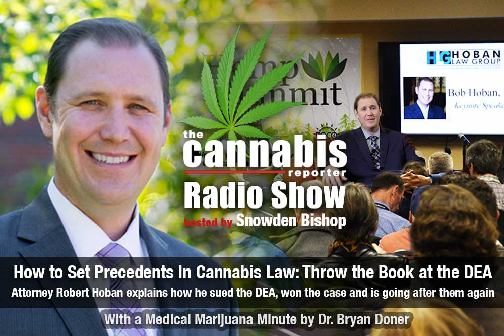 How to Set Precedents In Cannabis Law - Throw The Book at The DEA