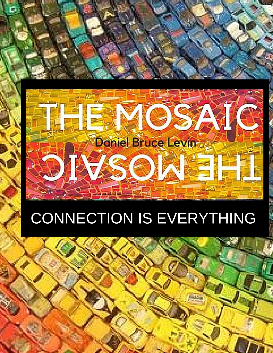 The Mosaic: The Power Of Connection with Danny Levin