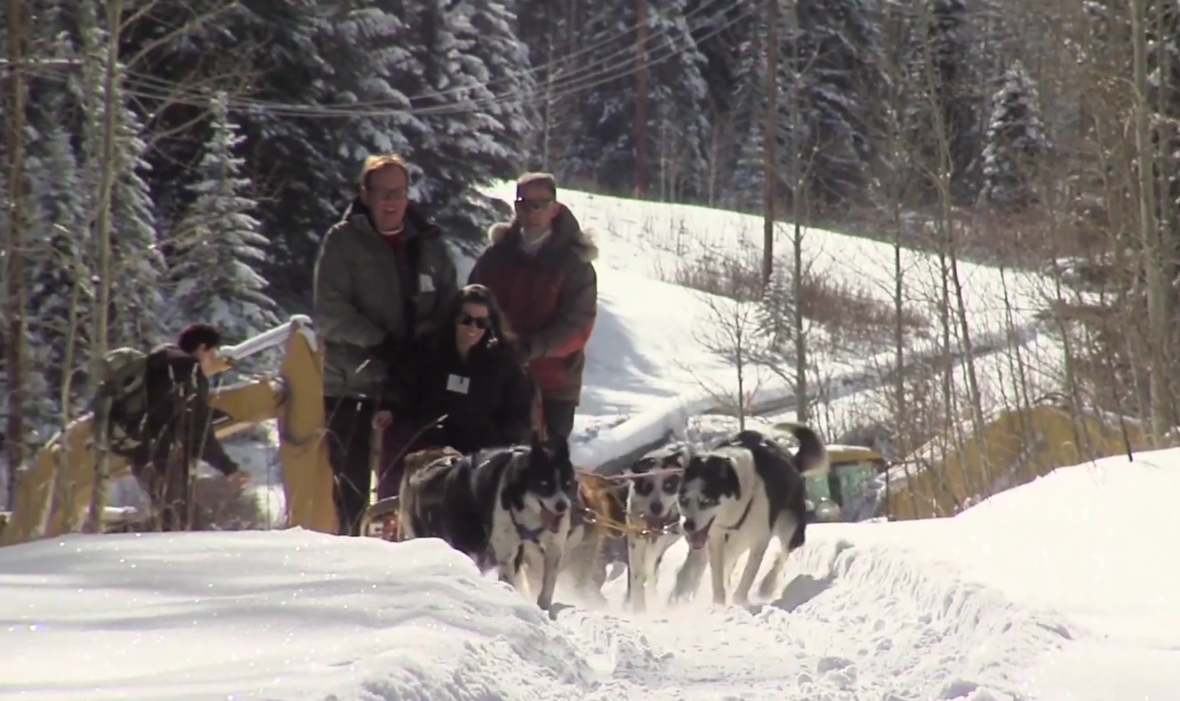 Durango Dog Sledding
