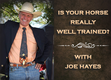 """Is Your Horse REALLY Well Trained?"" - Getting Your Horse Broke (Episode 2)"