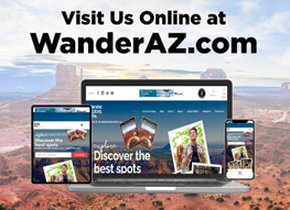 The Wander Podcast website