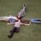 Surfer Blood Pythons Timbaland New Album Warner Bros.