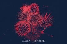 chris walla, sombear, record store day
