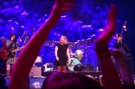 "Watch Sleater-Kinney Cover ""Rebel Rebel"" With Britt Daniel and The Thermals on New Year's Eve"