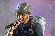 Del the Funky Homosapien Remains Hospitalized After Gorillaz Stage Fall