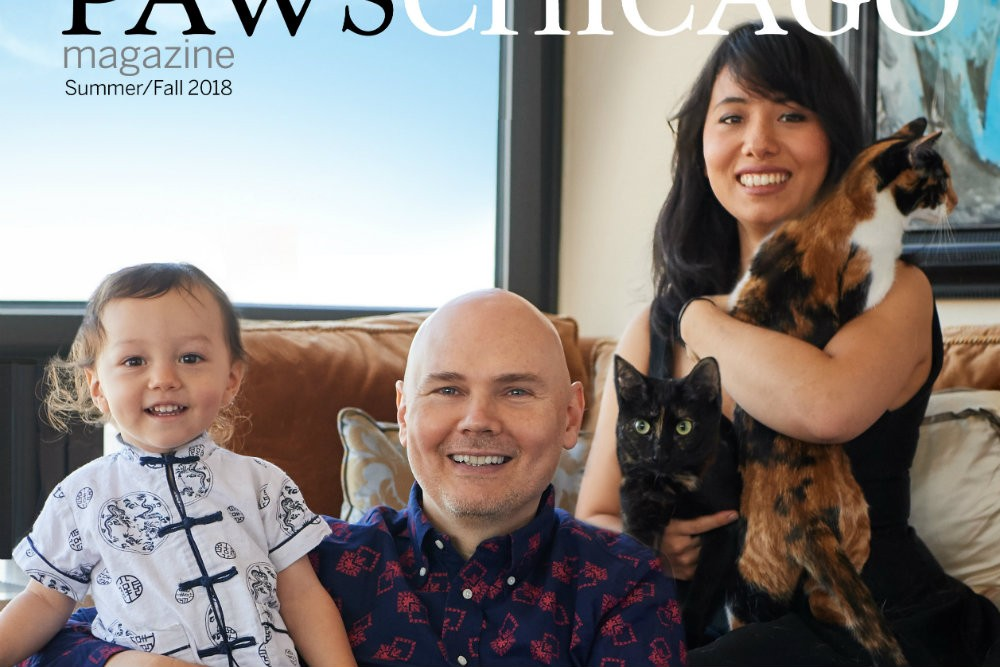 Billy Corgan's Family and Cats on the PAWS Chicago Cover