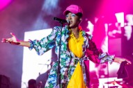 Nas and Santigold Dropped from Lauryn Hill <i>Miseducation</i> Tour Dates
