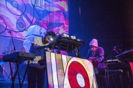 "Animal Collective – ""Summer Blaze"""