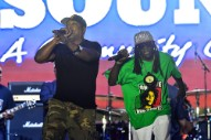 Chuck D Says Flavor Flav Was Never Fired From Public Enemy