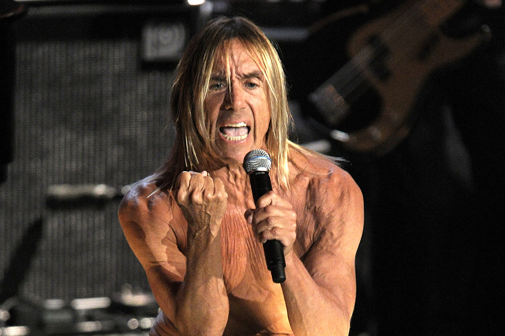 Iggy Pop Fights For 'Big Cat Public Safety Act' and Urges Florida Senators to Support