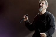 Serj Tankian Responds to Guests Rocking Out to System of a Down at a Nigerian Wedding