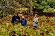 Yo La Tengo Share New Single 'Bleeding'