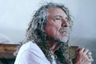 Robert Plant's Absolute, Invaluable Journey
