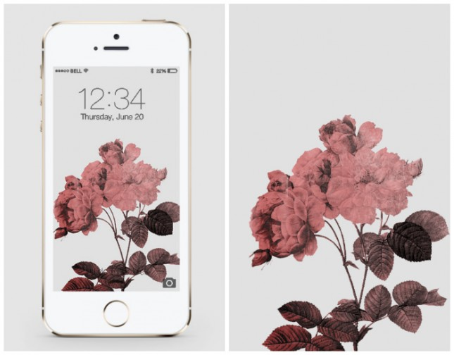 20 Free Iphone Wallpapers To Brighten Up Your Phone Brit