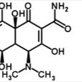 Doxycycline-hyclate-Stemgent-04-0016