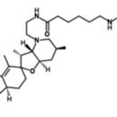 KAAD-Cyclopamine-Stemgent-04-0028