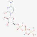 CTP-Biorbyt-orb65159-100