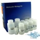 EZ-10-Spin-Column-Total-RNA-Mini-Preps-Super-Kit-Bio-Basic-BS583
