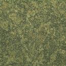 Cryopreserved-Plateable-RAT-Hepatocytes-Zen-Bio-Inc-HPR-F