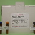 Apoptosis-Detection-Kit-Caspase-3-and-7-KAMIYA-BIOMEDICAL-COMPANY-KT-086