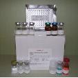 Hydroxyproline-ELISA-Kit-Human-KAMIYA-BIOMEDICAL-COMPANY-KT-53164
