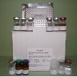 Inhibitor-K-Binding-Alpha-ELISA-Kit-IKBa-Rat-KAMIYA-BIOMEDICAL-COMPANY-KT-60185