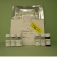 Interleukin-5-IL5-ELISA-Kit-Rat-KAMIYA-BIOMEDICAL-COMPANY-KT-19397