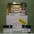 Interleukin-8-IL8-ELISA-Kit-Pig-KAMIYA-BIOMEDICAL-COMPANY-KT-19470