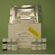 Growth-Hormone-GH-ELISA-Kit-Dog-KAMIYA-BIOMEDICAL-COMPANY-KT-32054